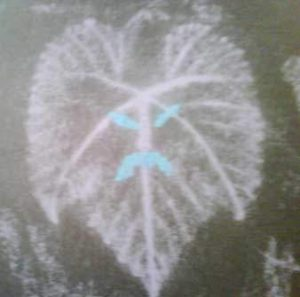 chalk-spooky_leaf