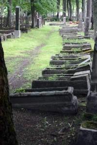graveyard-alevi-kalmistu