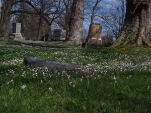graveyard-chompie_100_1513