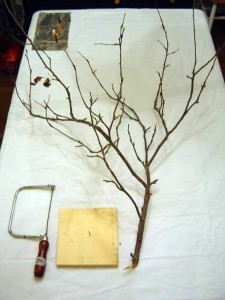 halloween-tree01