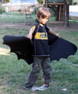 felt batman cape
