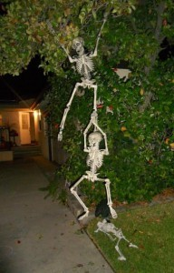 Halloween skeletons hanging from a tree