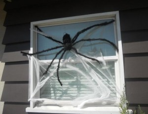 Spider Halloween decoration on window