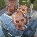 Decaying skull Halloween prop