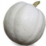 Great Gourds! Pumpkin Varieties and How to Use Them