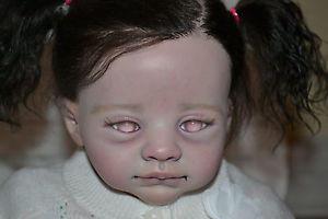 Image: ebay.com (Deadly Nightshade Reborn Nursery)