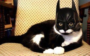Batman (clubflyersmag.com)